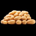 Aardappelen bio vastkokend stazak